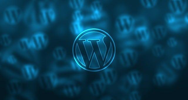 Palm Beach Web Design Company Services