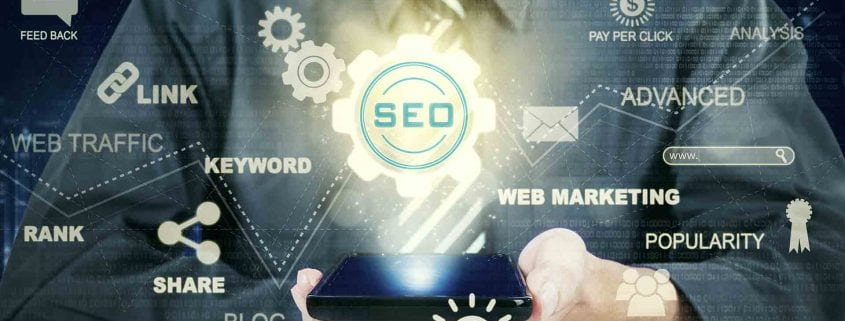Palm Beach Web Design Services-SEO